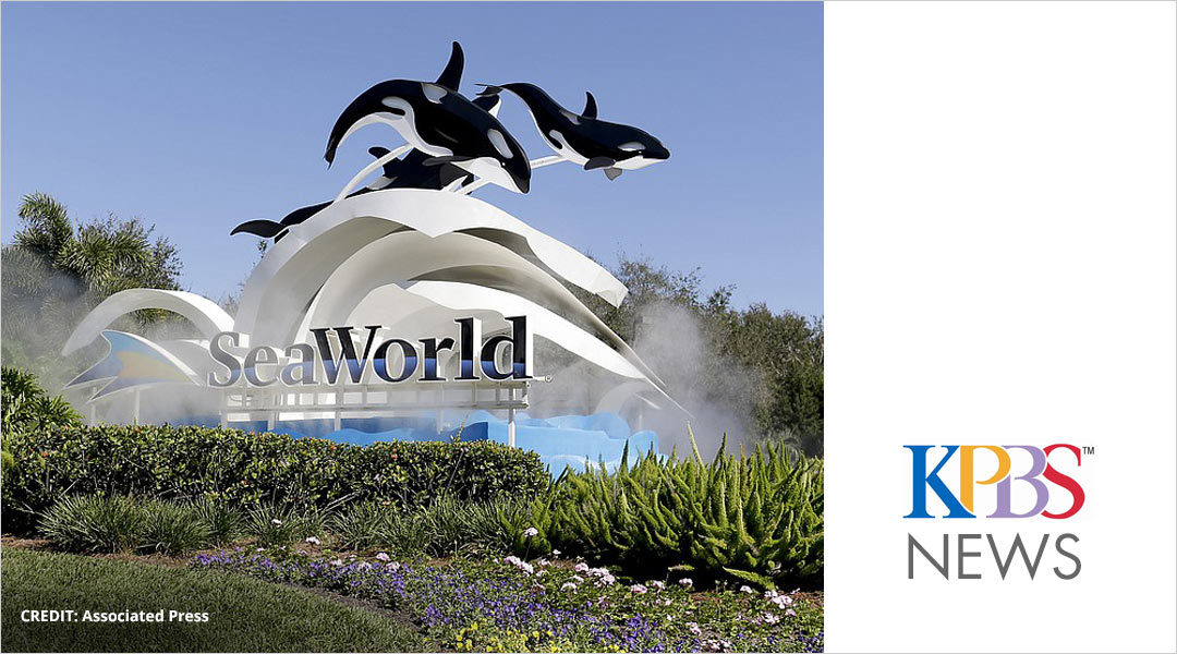 Friday Business Report: SeaWorld's New Leadership
